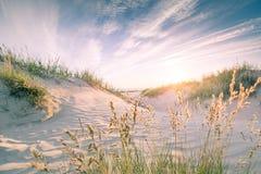在日落的沙滩 图库摄影
