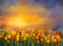 在日落的油画黄色和红色郁金香花田 库存照片