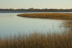 在日落的沼泽草在Milford的秋天指向,康涅狄格 免版税库存图片