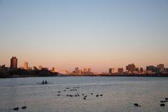 在日落的波士顿 免版税图库摄影