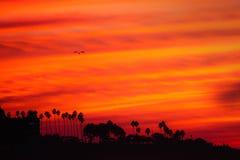 在日落的海岸线 免版税图库摄影