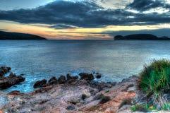 在日落的海景在与草和植物的冬天 图库摄影