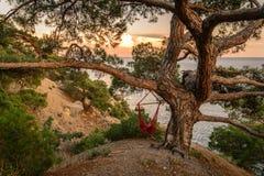 在日落的海景 库存图片