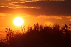 在日落的海滩康涅狄格 免版税库存照片
