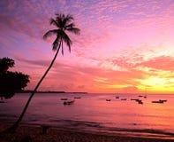 在日落的海滩,多巴哥。 免版税库存图片