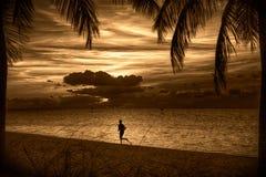 在日落的海滩 图库摄影