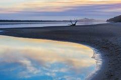 在日落的漂流木头,维多利亚,澳大利亚 免版税库存图片