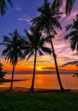 在日落的热带海滩 免版税库存照片