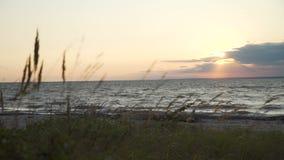 在日落的狂放的海滩 股票录像