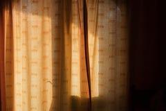 在日落的由后面照的帷幕 库存照片