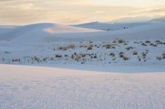 在日落的白色沙子国家历史文物沙丘与interdunal植被 图库摄影