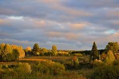 在日落的秋天横向 免版税库存图片