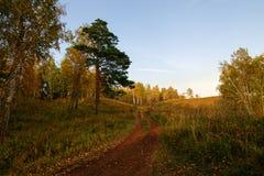在日落的秋天横向 图库摄影