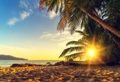 在日落的素林海滩在普吉岛海岛 库存图片