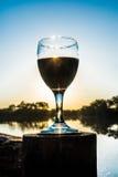 在日落的红葡萄酒 库存图片