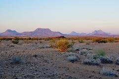 在日落的纳米比亚沙丘 免版税图库摄影