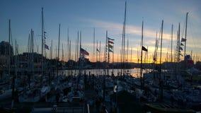 在日落的维多利亚港 库存照片