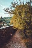 在日落的美丽的木头与在老城市Stari酒吧的最旧的道路在黑山 从古老废墟的秋天视图  库存图片
