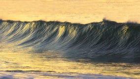 在日落的美丽的波浪 免版税库存照片