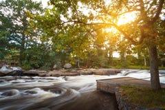 在日落的美丽的瑞典小河 免版税图库摄影