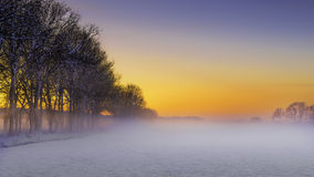 在日落的美好的冬天风景与雪和雾