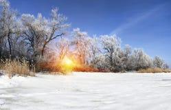 在日落的美好的冬天风景与雪 免版税库存图片