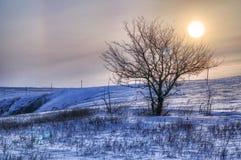 在日落的美好的冬天风景与雾和雪 免版税库存图片