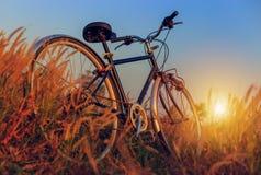 在日落的自行车在公园 免版税库存照片