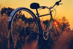 在日落的自行车在公园 库存照片