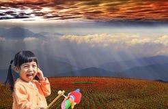 在日落的花田 图库摄影