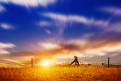 在日落的草原风景 免版税库存图片