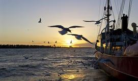 在日落的被停泊的拖轮 免版税库存照片