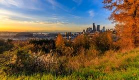 在日落的西雅图地平线在与黄色叶子的秋天在从博士的前景视图 何塞黎刹公园 免版税库存图片