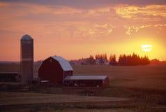 在日落的谷仓和筒仓, 图库摄影