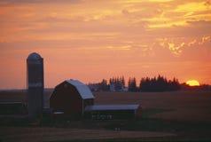 在日落的谷仓和筒仓 库存照片
