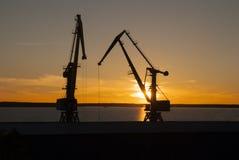 在日落的起重机在湖 夜间 免版税库存图片