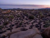 在日落的超大岩石在约书亚树国家公园 免版税库存照片
