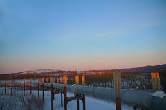 在日落的跨阿拉斯加管道在冬天 免版税图库摄影