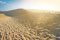在日落的转移沙丘 库存照片