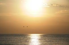 在日落的金黄湖 图库摄影