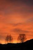 在日落的阿尔卑斯 库存图片