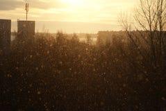 在日落的降雪 免版税库存图片