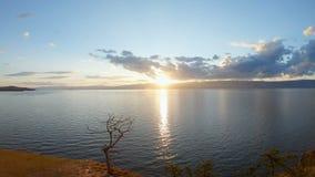 在日落的风景海景 E 在岸的树 影视素材