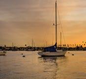 在日落的风船,纽波特海湾,加利福尼亚 免版税库存照片