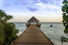 在日落的马尔代夫跳船 库存图片