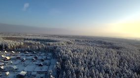 在日落的鸟瞰图在降雪 在领域和冬天林木附近的村庄,村庄路和屋顶在雪的 股票视频