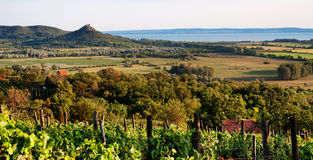 在日落的,匈牙利湖Balaton环境美化 免版税库存图片