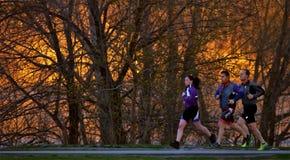 在日落的3位慢跑者 免版税图库摄影