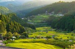在日落的稻米大阳台 Yotsuya,爱知县,日本 免版税库存照片