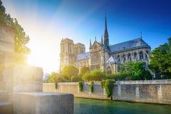 在日落的Notre Dame -巴黎,欧洲 图库摄影
